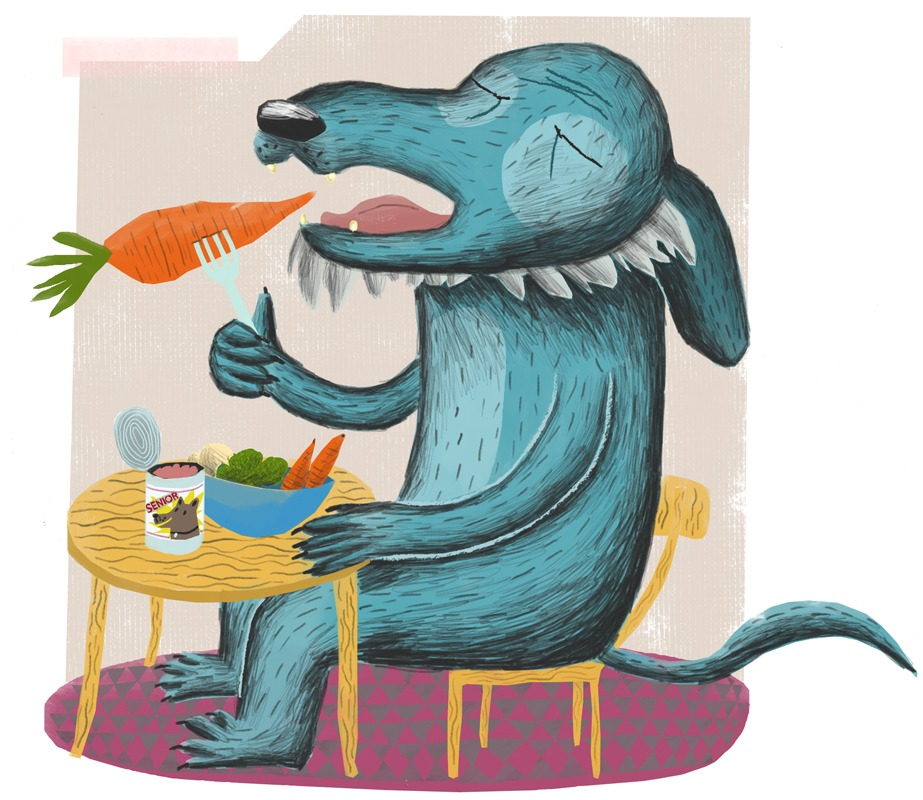 """Mature dog No. 3"" – Illustration of an old dog's diet"