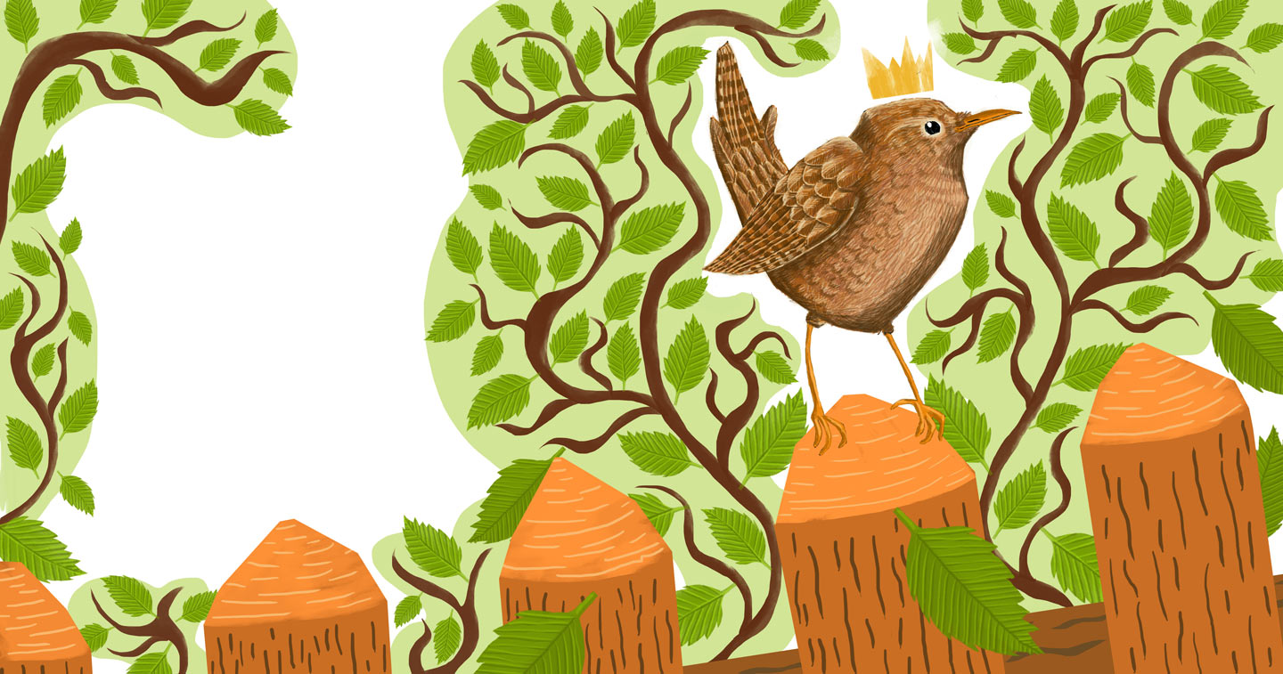 """Wren"" – Illustration from ""Sing, Sang, Zwitscherklang"""